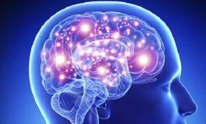 Мозг коучинг